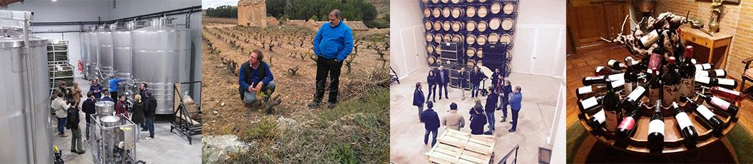 Visitas a viñedos